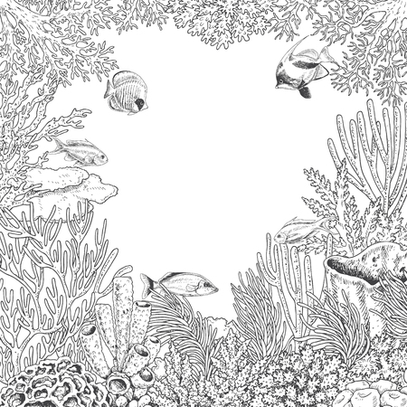 Hand drawn underwater natural elements. Sketch of reef corals and swimming fishes.