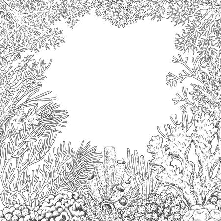 Hand drawn underwater natural elements. Sketch of reef corals background.