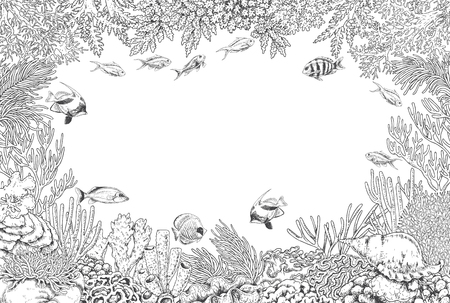 Hand drawn underwater natural elements. Sketch of reef corals  and swimming fishes background.  Monochrome horizontal rectangle frame with space for text. Black and white illustration coloring page.