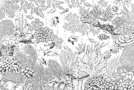 Hand drawn underwater natural elements. Sketch of reef corals and swimming fishes.  Monochrome horizontal illustration of sea life. Black and white coloring page. Ilustração