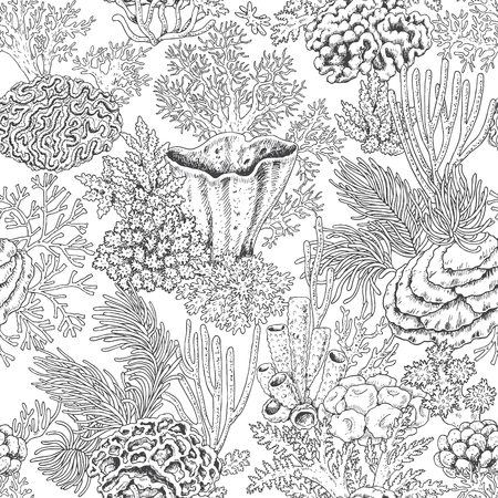 Hand drawn underwater natural elements. Seamless pattern with reef corals. Sea bottom monochrome texture. Black and white coloring page. Vector sketch.