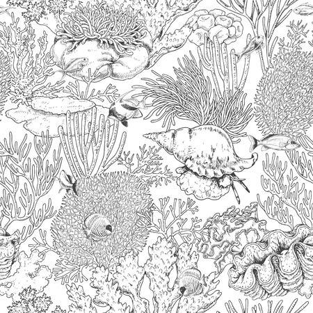actinia: Hand drawn underwater natural elements. Seamless pattern with reef corals, actinia, clams and swimming fishes. Sea bottom monochrome texture. Black and white coloring page. Vector sketch. Illustration