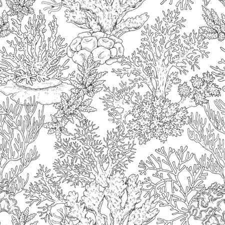 手には、水中の自然な要素が描画されます。サンゴ礁でのシームレスなパターン。海底モノクロ テクスチャ。黒と白のイラスト ページを着色します