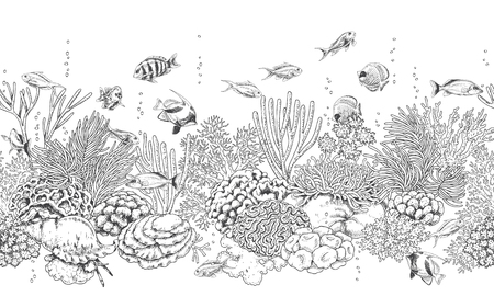 Hand drawn underwater natural elements. Seamless line horizontal pattern with reef corals, actinia, clams and swimming fishes. Monochrome sea bottom texture. Black and white illustration. Ilustração