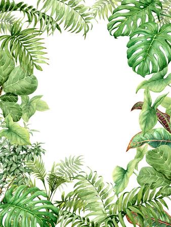 Hand getrokken takken en bladeren van tropische planten. Natuurlijke groene achtergrond met ruimte voor tekst. Waterverf rechthoek verticale frame. Stockfoto