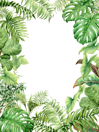 Hand drawn  branches and leaves of tropical plants. Natural green background with space for text. Watercolor rectangle vertical floral frame.