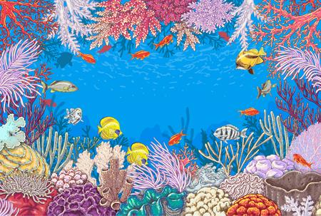 algas marinas: Elementos naturales subacuáticos dibujados a mano. Bosquejo de corales de arrecife y peces nadando vivos. Fondo submarino del tema del mundo. Colorido marco rectángulo horizontal con espacio para texto. Vectores