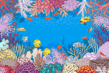 Hand drawn underwater natural elements. Sketch of reef corals  and  vivid swimming fishes. Undersea world theme background. Colored horizontal rectangle frame with space for text. Zdjęcie Seryjne - 76784719