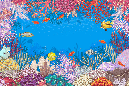 polyp: Sketch of reef corals  and  vivid swimming fishes.