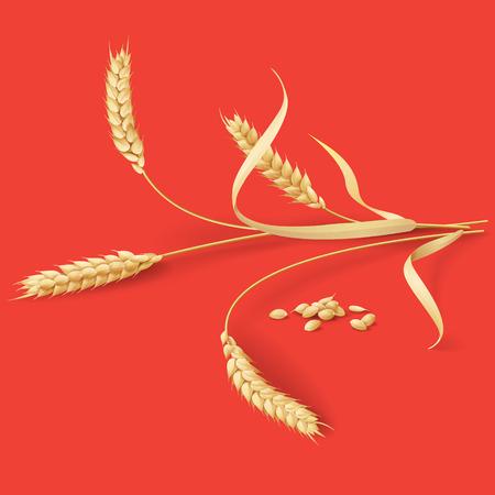 熟した小麦の耳と赤い背景上の粒。  イラスト・ベクター素材