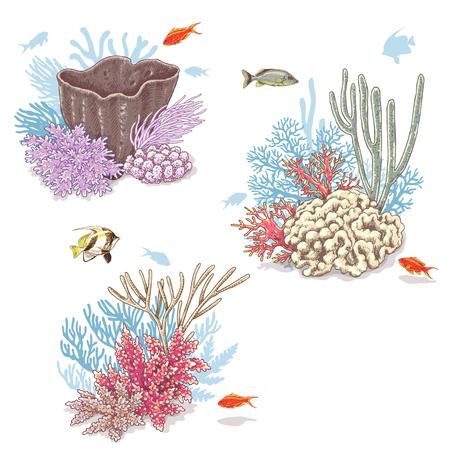 Hand getekend onderwater natuurlijke elementen. Schets van levendige koraalkorven en zwemmende vissen geïsoleerd op een witte achtergrond. Stock Illustratie