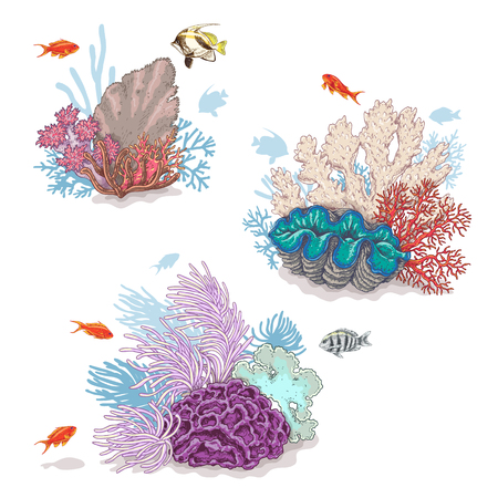 Hand drawn underwater natural elements. Sketch of vivid reef corals and swimming fishes isolated on white background. Stock Illustratie