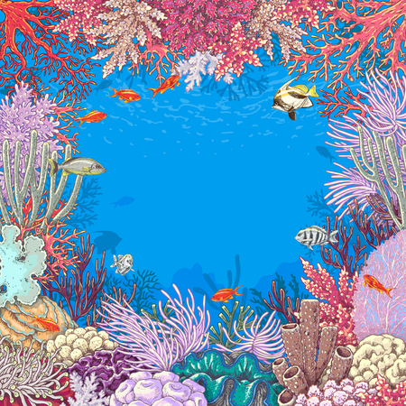 Hand drawn underwater natural elements. Sketch of reef corals  and  vivid swimming fishes.