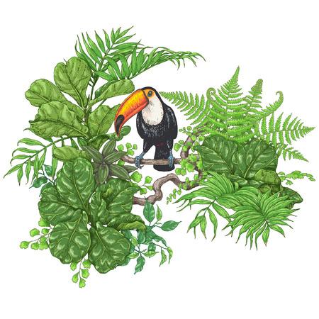 손으로 그려진 된 가지와 열 대 식물의 나뭇잎. 생생한 꽃 무리와 화이트 절연 조류입니다. 큰 부리 새가 분기에 앉아입니다. 벡터 스케치입니다.