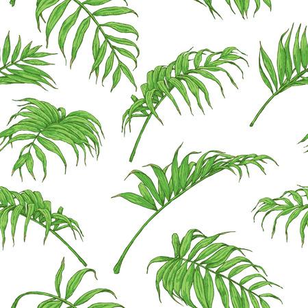 手描きは、枝や葉は熱帯植物の。シームレスなパターンは、白で隔離緑のヤシの葉で作られました。