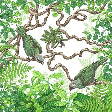Hand getrokken takken en bladeren van tropische planten. Groene papegaaien die op de takken van Liana zitten. Vector schets.