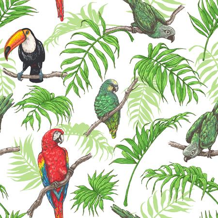 手は、白い背景で熱帯の鳥とヤシの葉のシームレスなパターンを描画します。鮮やかなオウム、オオハシの枝の上に座って。ベクター スケッチ。