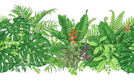 Hand gezeichnete Zweige und Blätter von tropischen Pflanzen. Lebendige Linie horizontales Blumenmuster. Grüne nahtlose Grenze auf weißem Hintergrund. Vektorskizze.