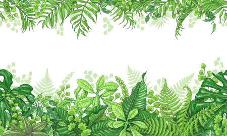 Hand getekende takken en bladeren van tropische planten. Levendige lijn horizontale bloemenpatroon. Groene dubbelzijdige naadloze rand. Vector schets.