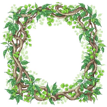 Hand getekende takken en bladeren van tropische planten. Vierkante frame gemaakt met groene varen, ficus en liana stammen. Ruimte voor tekst. Vector schets.