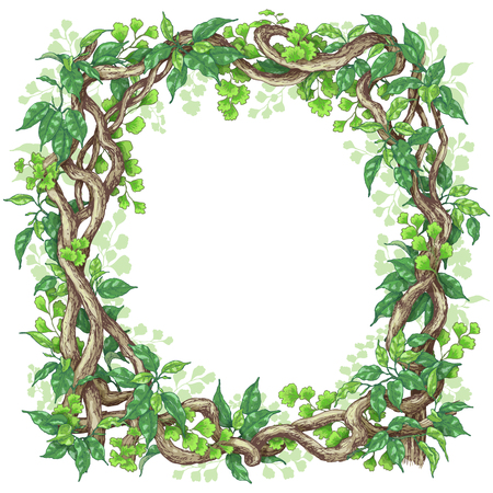 Hand drawn branches and leaves of tropical plants. Square frame made with green fern, ficus   and liana trunks.  Space for text. Vector sketch.