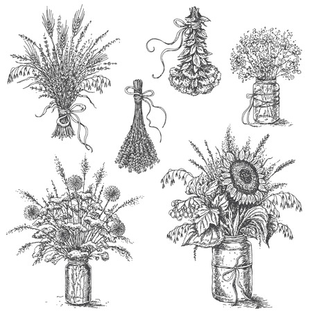 Hand drawn rustic decoration set. Monochrome bouquets of flowers and dried herbs isolated on white.  Vector sketch.