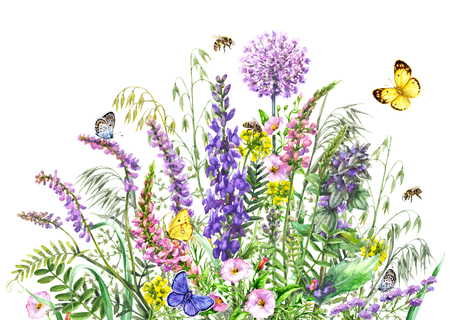 Hand drawn wild flowers and insects. Watercolor vivd wildflowers bunch, flying butterflies and bees isolated on white.