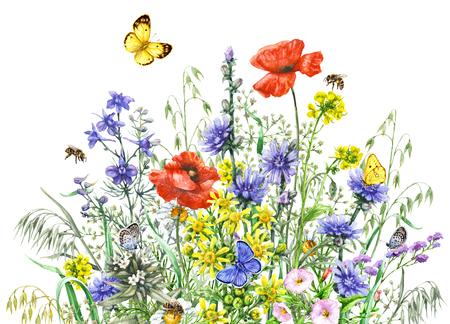 Disegnati a mano fiori selvatici e insetti. Mazzo vivo dei wildflowers dell'acquerello, farfalle volanti e api isolati su bianco. Archivio Fotografico - 83715793