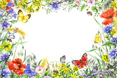 Hand drawn wild flowers and insects. Watercolor vivid rectangle horizontal frame with yellow, blue, red wildflowers, flying butterflies and bees. Space for text.