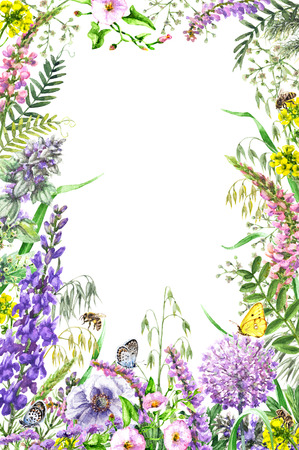 손으로 그린 야생 꽃과 곤충입니다. 노란색, 분홍색, 라일락 야생화, 나비와 꿀벌 수채화 생생한 사각형 세로 프레임. 텍스트를위한 공간입니다.