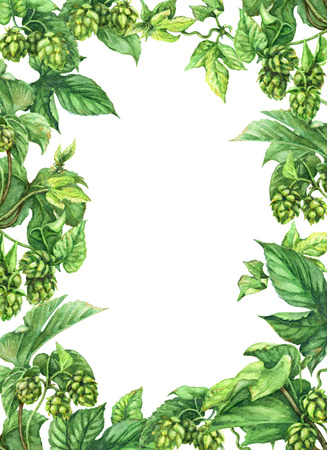 Hand drawn hop branches. Watercolor green rectangle vertical frame  with leaves and cones of hops. Octoberfest theme. Space for text.