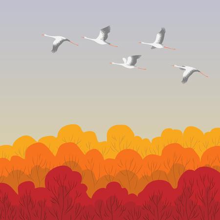 コウノトリは、森の上を飛んでします。コウノトリ秋移行。鳥飛行の平面イラスト。