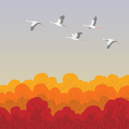 White storks flying over the forest. Stork Autumn migration. Bird flight flat illustration.