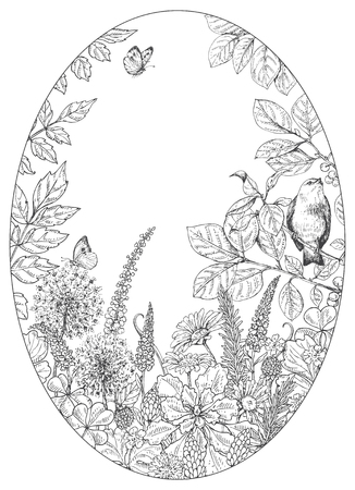 Hand drawn floral elements. Black and white flowers, plants, butterflies and sitting bird on branch. Monochrome vector sketch.  Oval frame.  Space for text. Illustration