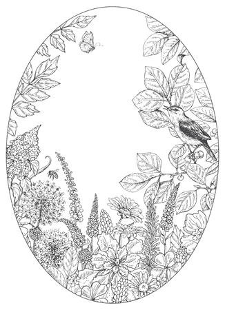Hand drawn floral elements. Black and white flowers, plants, insects and sitting songbird on branch. Monochrome vector sketch.  Oval frame.  Space for text.