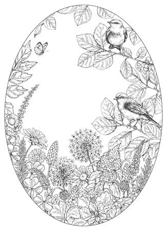 Elementi floreali disegnati a mano. Fiori in bianco e nero, piante, farfalle e uccelli canori seduti sui rami. Schizzo vettoriale monocromatico. Cornice ovale. Spazio per il testo Archivio Fotografico - 85388998