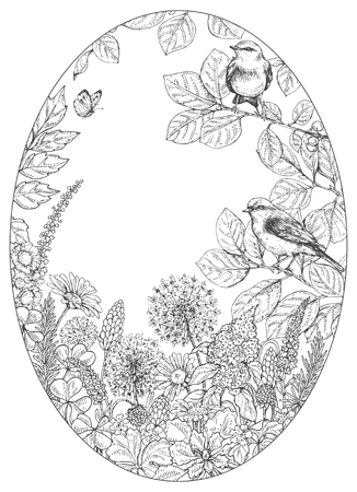 Hand drawn floral elements. Black and white flowers, plants, butterfly and sitting songbirds on branches. Monochrome vector sketch.  Oval frame.  Space for text. Иллюстрация