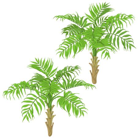 Palmbomen pictogram. Stock Illustratie