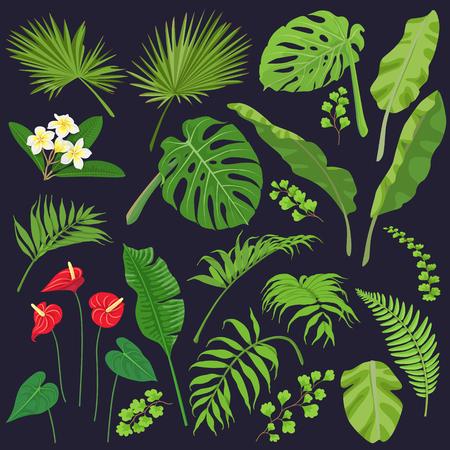 Leaves and flower image illustration. Ilustração
