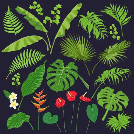 Leaves and flower image illustration. Çizim