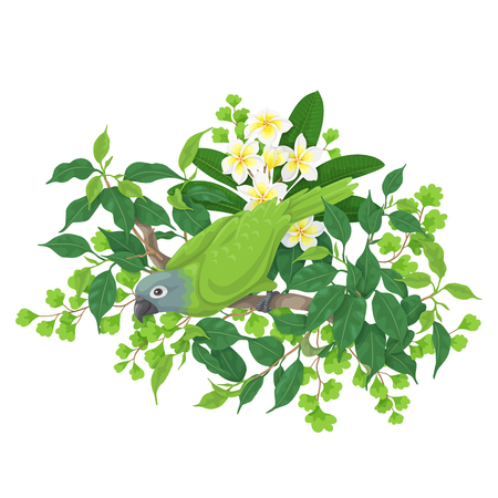 Green parrot sitting on tree branch. Leaves and flowers of tropical plants and bird isolated on white.Vector flat illustration. Illustration