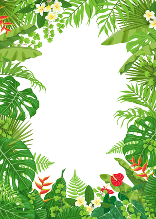 Colorful leaves and flowers of tropical plants frame vector