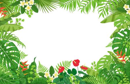 Kolorowe liście i kwiaty roślin tropikalnych wektor ramki