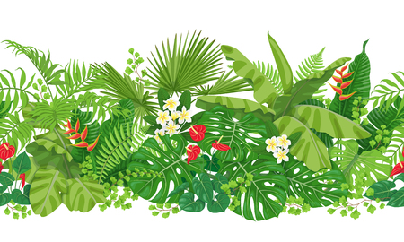 Horizontal pattern made with colorful leaves and flowers of tropical plants
