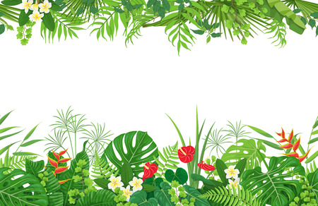 Horizontal floral seamless pattern made with colorful leaves and flowers of tropical plants on white background. Tropic rainforest foliage border. Vector flat illustration. Stock Illustratie