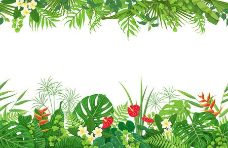 Horizontales nahtloses mit Blumenmuster gemacht mit bunten Blättern und Blumen von tropischen Anlagen auf weißem Hintergrund. Tropische Regenwaldlaubgrenze. Flache Vektorgrafik. Vektorgrafik