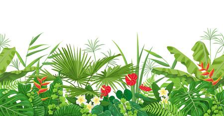 Horizontale nahtlose mit Blumengrenze gemacht mit bunten Blättern und Blumen von tropischen Anlagen auf weißem Hintergrund. Tropisches Regenwaldlaubmuster. Flache Vektorgrafik.