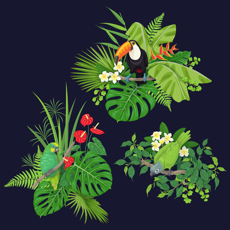 Green parrots and toucan sitting on tree branch.  Leaves and flowers of tropical plants and birds isolated on dark background.Vector flat illustration.