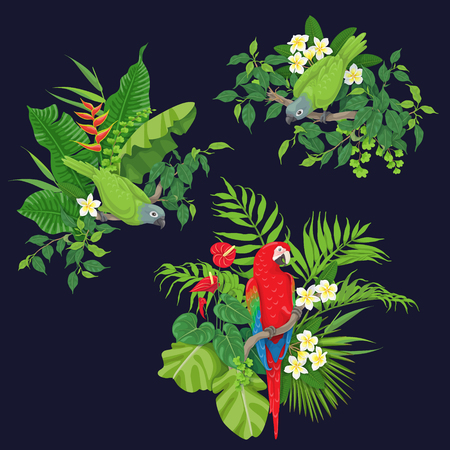 Groene papegaaien en rode arazitting op boomtak. Bladeren en bloemen van tropische planten en vogels geïsoleerd op donkere achtergrond. Platte vectorillustratie