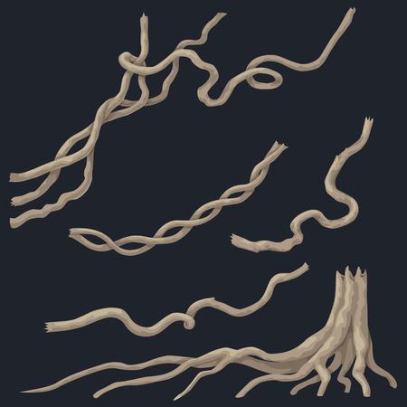蔓枝セットとツリーは、暗い背景に分離のルーツを持つ切り株。木質は、熱帯雨林の植物を登山します。
